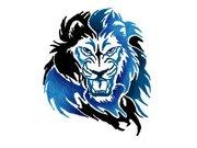 HC Ice Lions